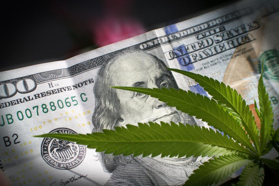 Here Are The Top 5 Financial Leaders In The Cannabis Industry