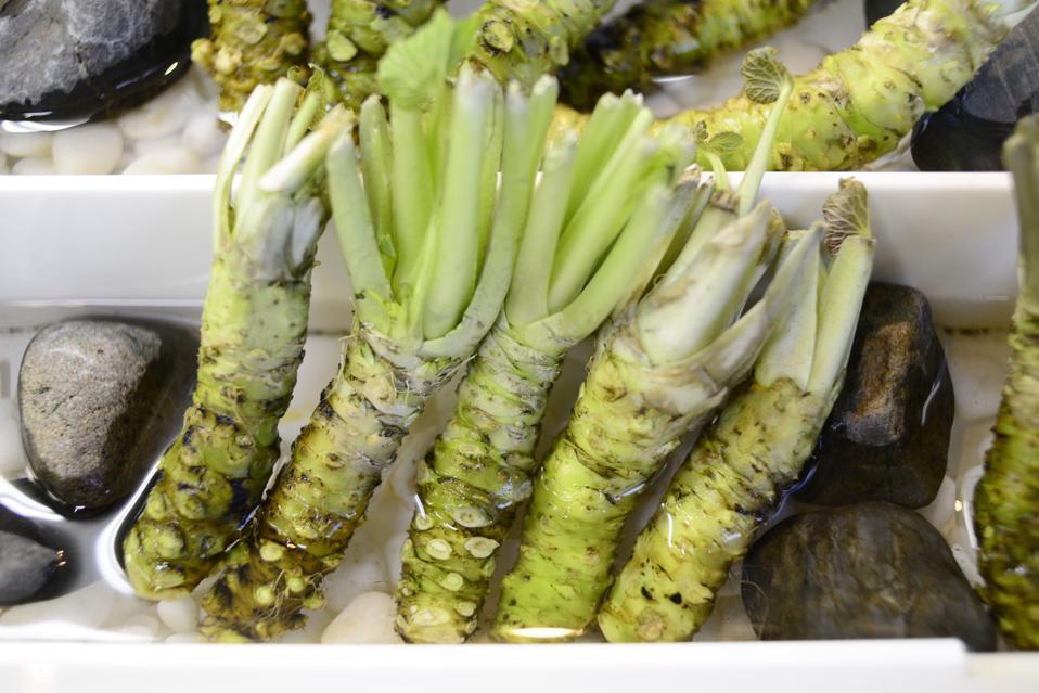 Japan: wasabi