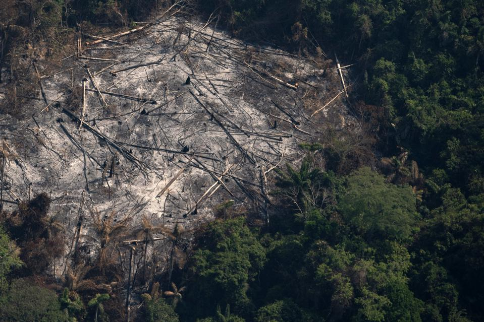Brazil Amazon Fires Indigenous