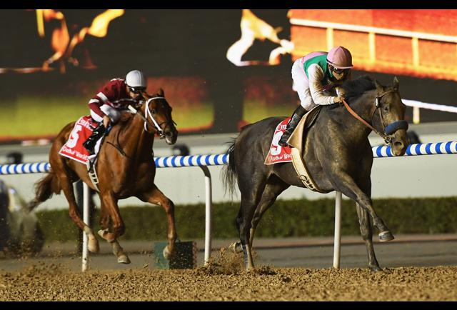 Dubai World Cup 2017: With Stunning Come-from-behind Win, Arrogate Takes Home $6-million