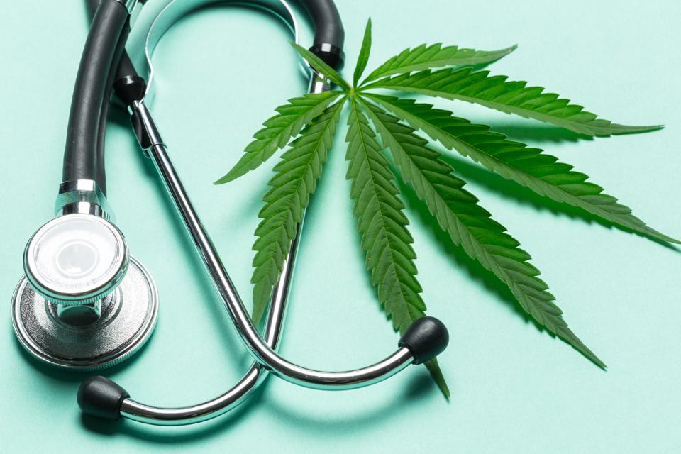 Image result for Can CBD and medical cannabis combat the opioid crisis?