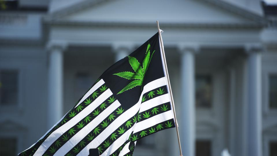Hundreds of advocates for marijuana legalization rally and  smoke pot outside the White House.