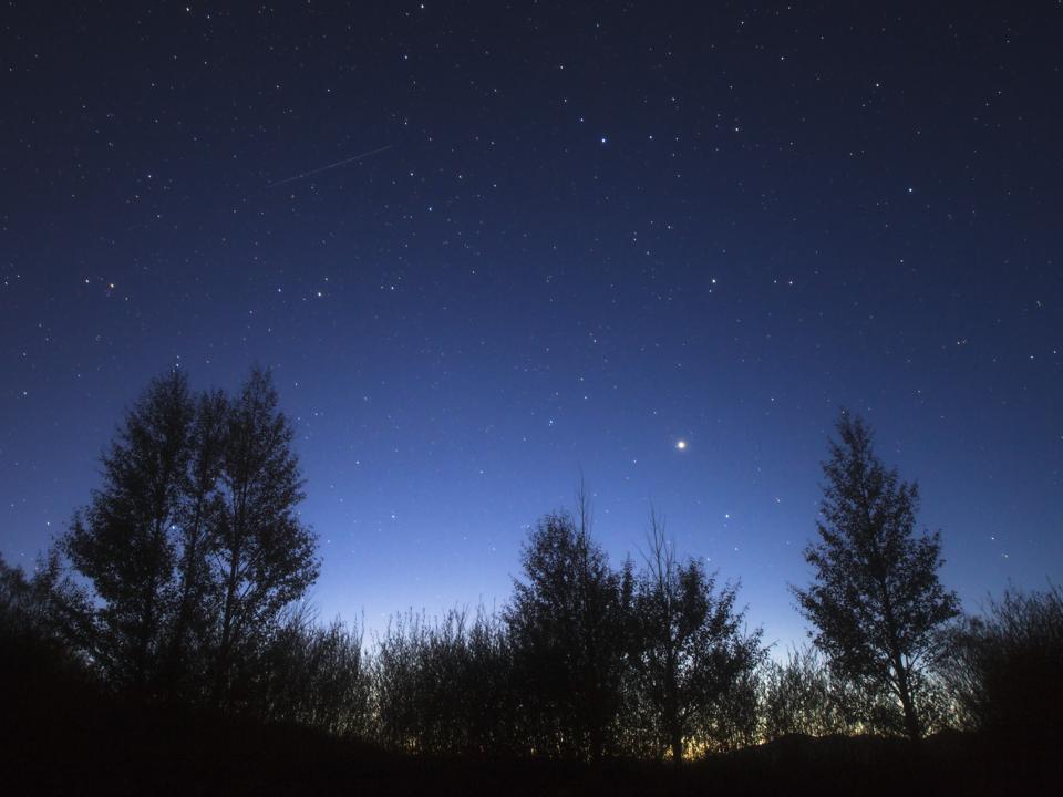 Stars Corona Borealis and Arcturus shining above the trees as twilight fades to darkness.