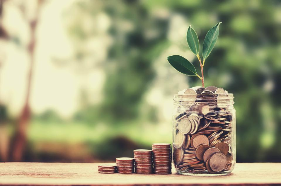 concept growth money and tree on coin glass jar saving and investment