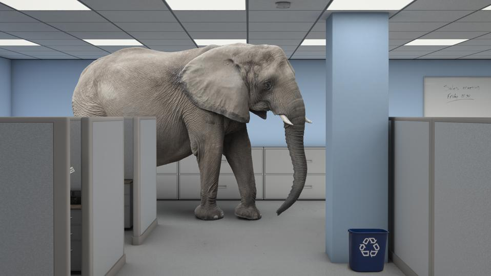 Elephant in the room work office