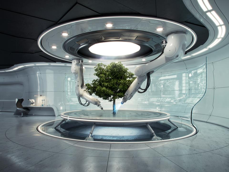 Futurelab Baum quer