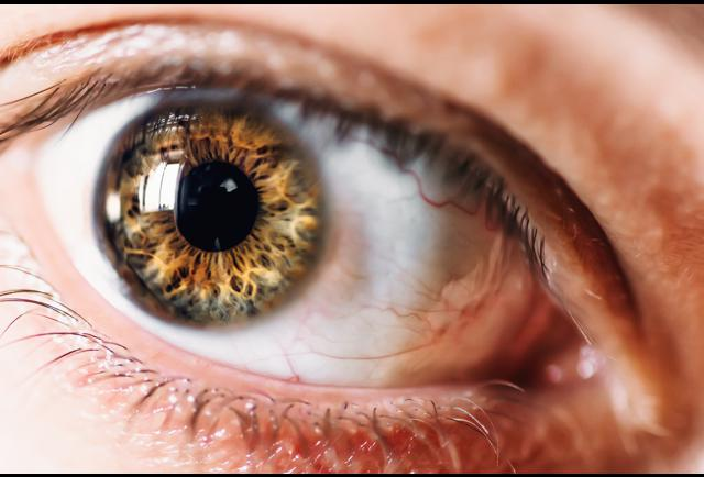 people whose eyes have a dark ring around the iris appear more attractive  study says