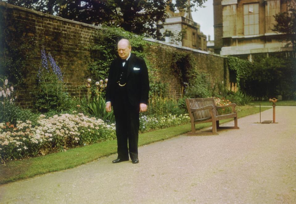 Churchill In Garden