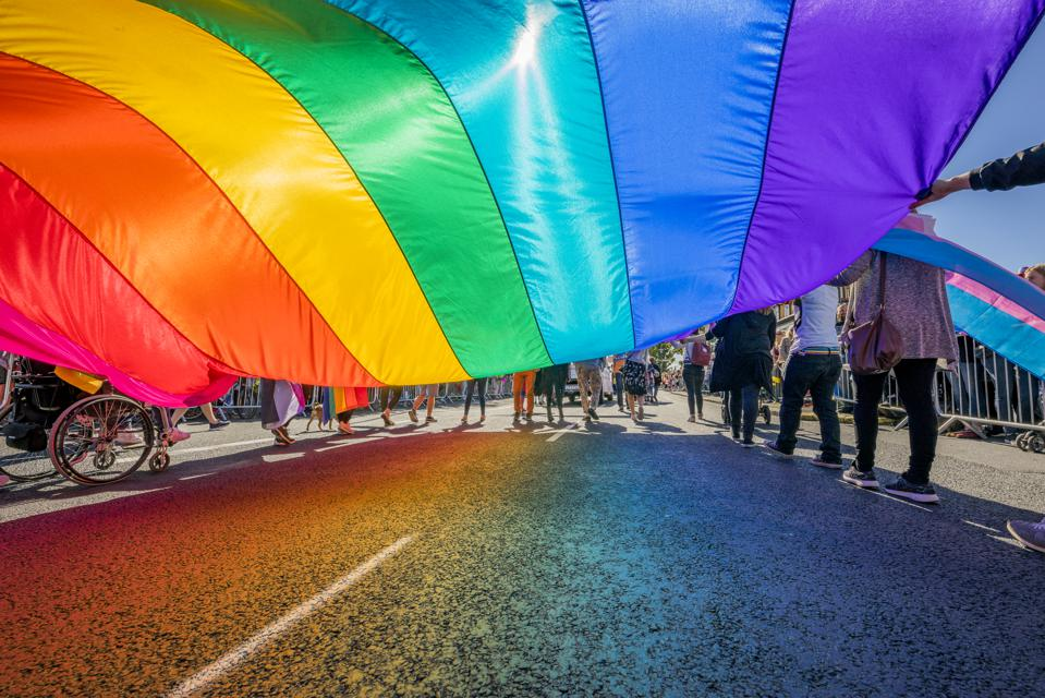 People celebrating Gay Pride in Reykjavik, Iceland wave LGBT and trans pride flag - What can lgbt prides learn from the wave of digital prides?