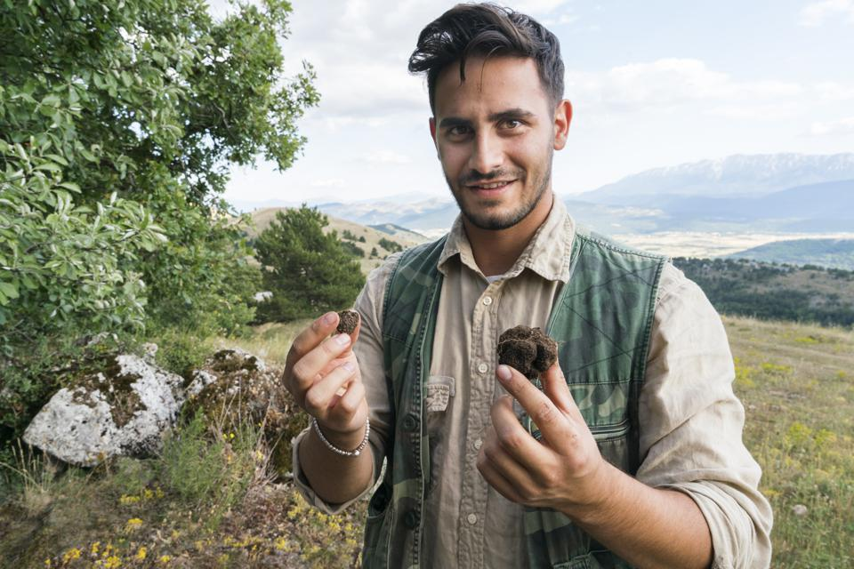 Male truffle hunter in his  20's holds a large and small truffle in his hands that he collected in the forest with his two dogs on a summer day, Abruzzo, Italy, Europe