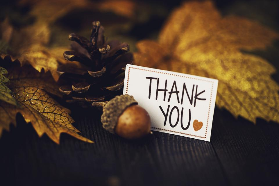 Thanksgiving background with leaves and message