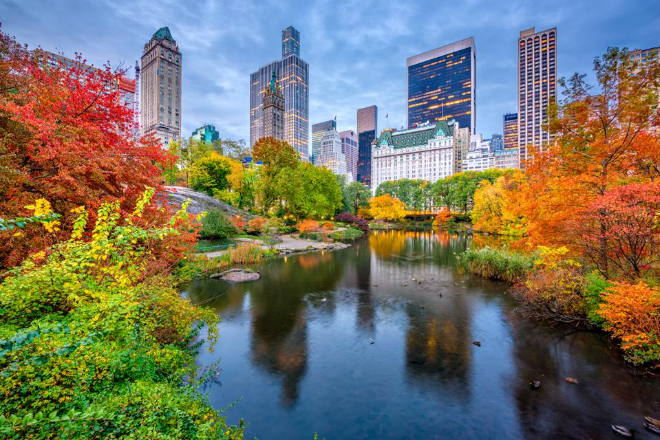 Autumn In New York: Try 7 Inviting Ideas For Travel Lovers