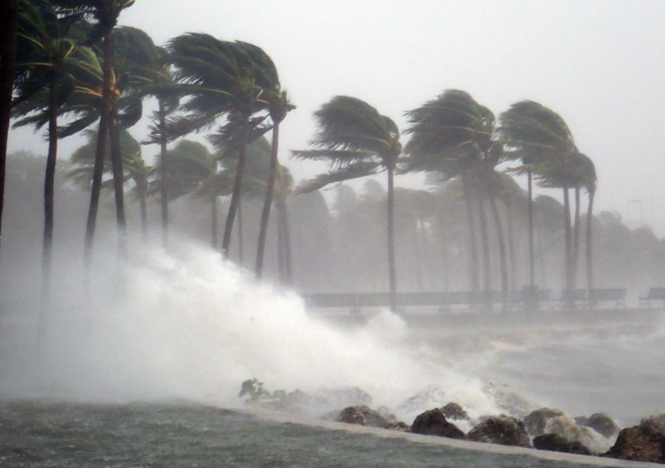 Coronavirus Dispatches: The Hurricane Is Already Here
