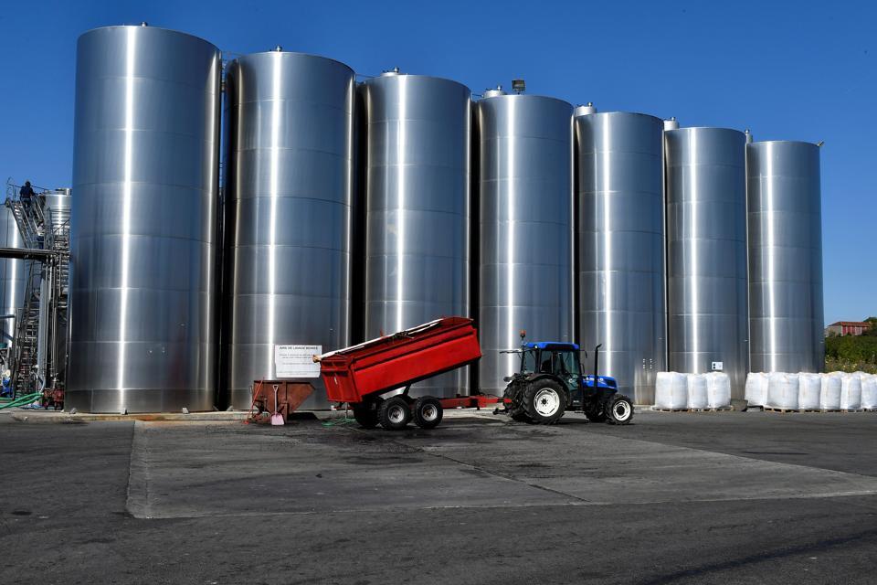 FRANCE-AGRICULTURE-HARVEST-WINE