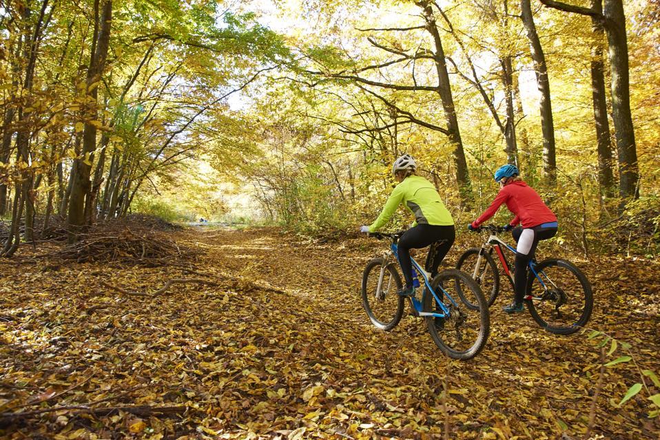 Womens Ladies Gym Sports Bikewear Wetlook Stretch Sportive Biker Cycling Shorts