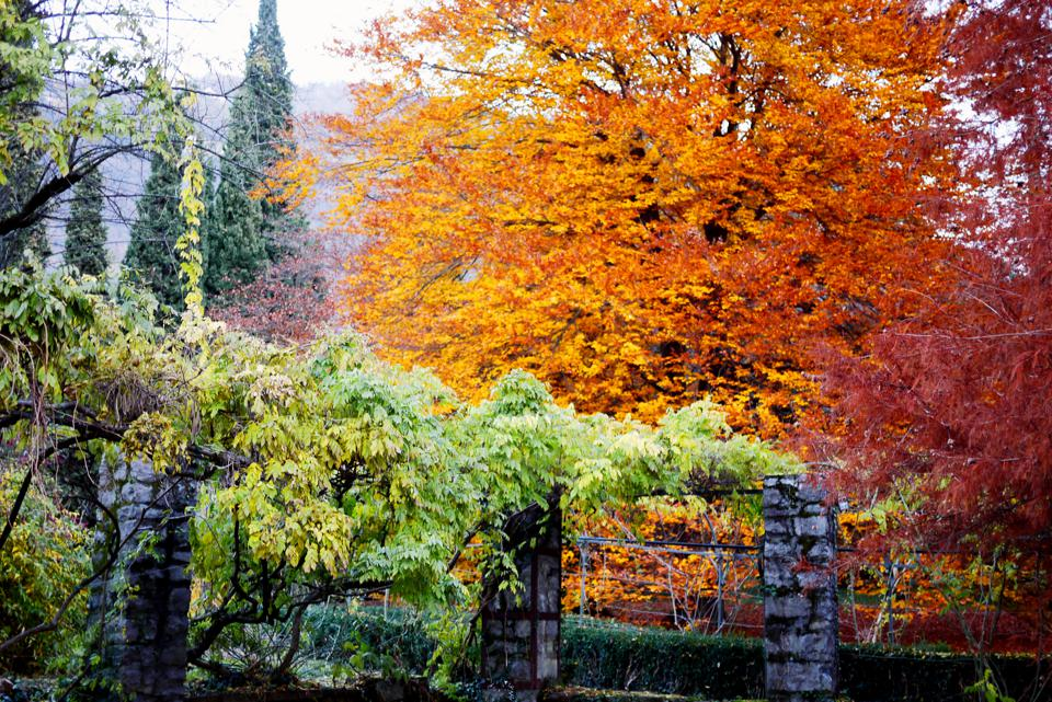 Italian public park with richly colored autumn trees