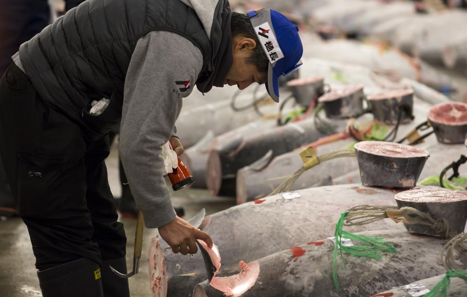 Tsukiji Fish Market Holds First Auction For 2018
