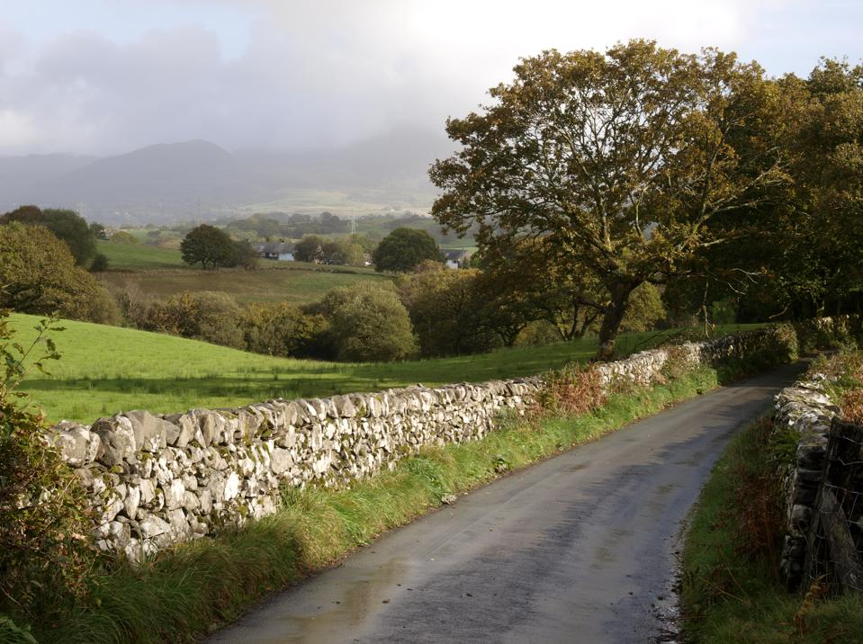 Narrow country road, Gwynedd, Snowdonia National Park, North Wales, UK