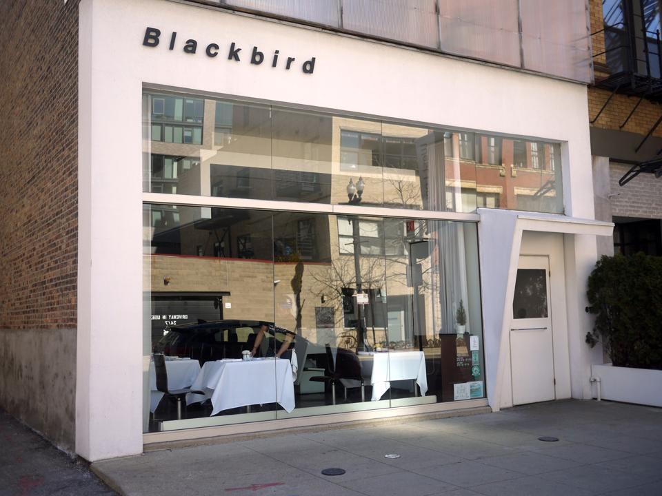 Outside Blackbird