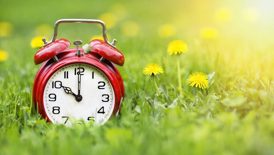 Summertime banner - alarm clock and dandelion flowers