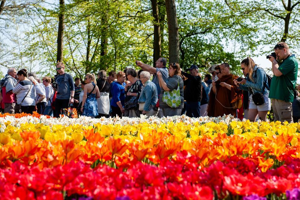 Keukenhof, The Garden Of Europe