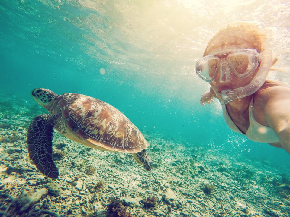 Selfie of girl with turtle underwater