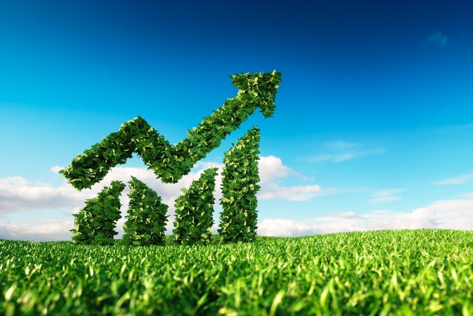 Eco friendly sustainable carbon neutral zero waste SAP