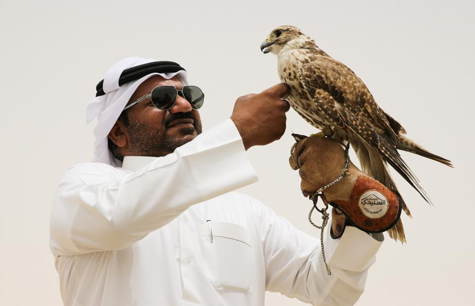 Qatar in pictures
