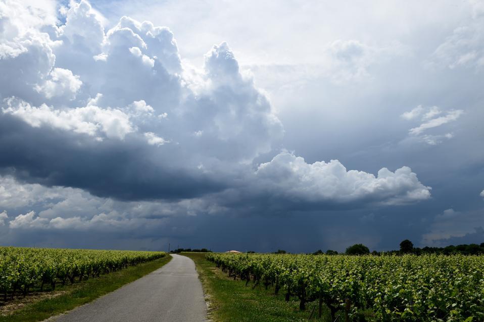 Clouds near Pauillac, Médoc, Bordeaux (photo Nicolas Tucat)