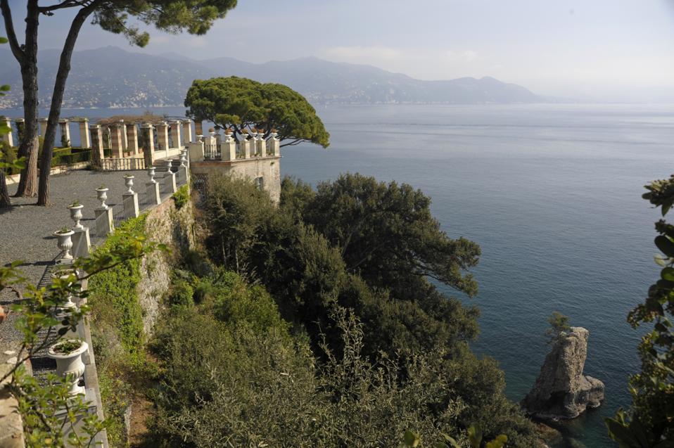 Portofino terrace and three pines, Liguria