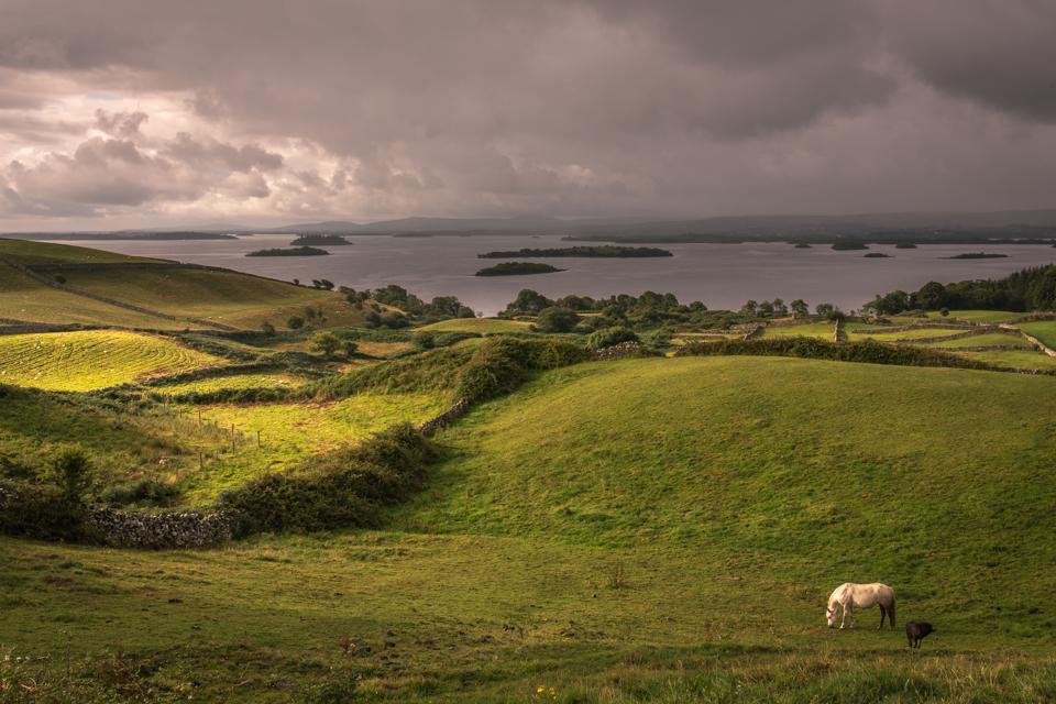 Farmland in Galway, Ireland.