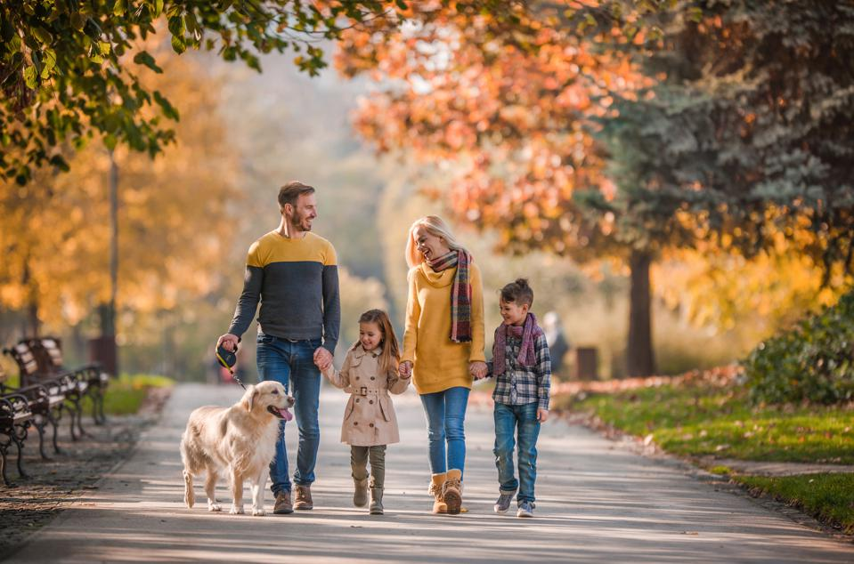 Young happy family holding hands while taking their dog for a walk in autumn day.