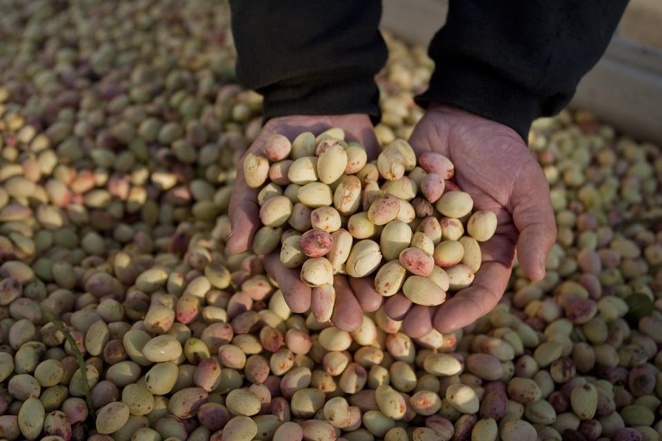 Coronavirus outbreak at pistachio processor Primex Farms, United Farm Workers says.